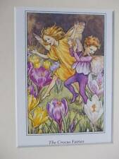 CROCUS Flower Fairy, Cicely Mary Barker in 10in x 8in Ivory Mount 8 x 6 Print