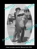 OLD POSTCARD SIZE FISHING PHOTO OF MAN CARRYING A MASSIVE MURRAY COD c1930