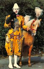 Circus Clown with Pony and Dog postcard
