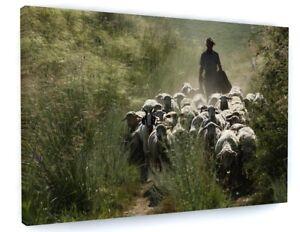 FARMING SHEEP ANIMAL CANVAS PICTURE PRINT WALL ART #5444