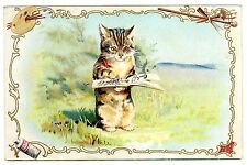 POSTCARD CAT WRITING IN BOOK UNSIGNED HELENA MAGUIRE
