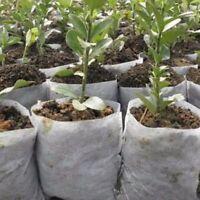 100× Pflanzbeutel Pflanzsack aus Vliesstoff Pflanz Taschen Biologisch Abbaubar