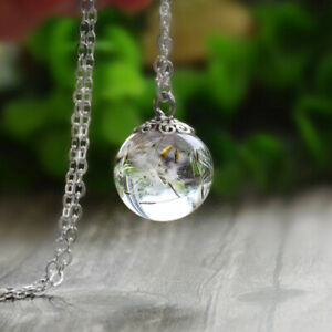Curious Resin Wish Necklace Real Dandelion Seed Handmade Amber Pendant Jewellery