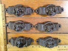 set of 8 DOG HANDLES BIN PULL 3-7/8 rustic cast iron Drawer Cabinet