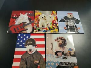 Vintage 90s action animals Folders Mead  + Raymond Geddes Lot of 5 new 2 pockets