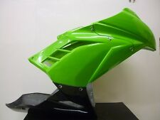 Kawasaki Ninja 300 Race fairing kit comes with seat unit as well