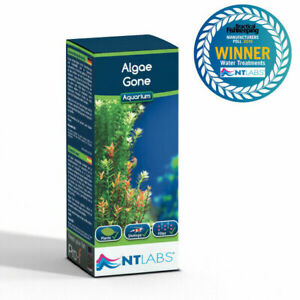 NT Labs Algae Gone Aquarium Fish Tank Green Water / Algae Treatment 100ml
