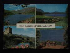 The Lakes Of Killarney c1960's Postcard (P236)