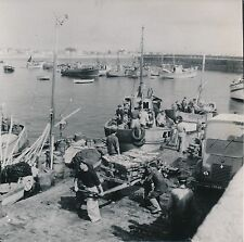 QUIBERON c. 1950 - Bateaux Marins Déchargement Port Maria Morbihan - Div 10721