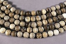 "CLASSIC TAUPE PETRIFIED WOOD AGATE 10MM ROUND BEADS 15.5"" STRAND"