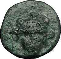 CHALKIS in EUBOEA 290BC Hera Eagle Serpent Authentic Ancient Greek Coin i48797