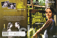 A Tree Grows in Brooklyn  (1945) - Dorothy McGuire, Joan Blondell  DVD NEW