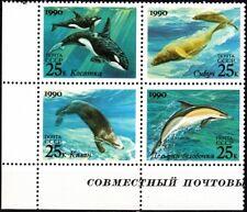RUSSIA/USSR 1990 FAUNA: Marine Mammals. Whale, Dolphin. Joint USA. CORNER, MNH
