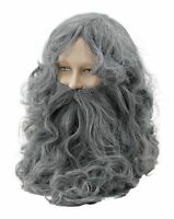 Grey Wizard Wig and Long Thick Beard Fandy Dress Old Man Hagrid Gandalf Costume
