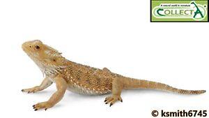 CollectA BEARDED DRAGON solid plastic toy wild zoo animal Desert lizard * NEW 💥