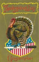 THANKSGIVING – Turkey and Stars and Stripes Shield Patriotic Postcard