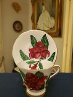 Tuscan English China HAWAIIAN FLOWERS Series TORCH GINGER Full Size Cup & Saucer