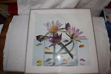 IKEA Bilderahmen mit Bild Blumen und Fische 16527 Größe 50,5 x 51,0 cm