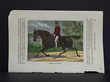 Horses, c.1890 Movement In Trotting #57