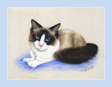 Ragdoll Gato estampado en azul Por Irina garmashova