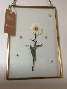 PAPERCHASE VINTAGE PRESSED FLORAL 6 x 4 HANGING FRAME