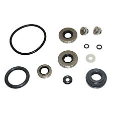 Seal Kit, Lower Gearcase  Johnson/Evinrude 9.9-15hp  396350