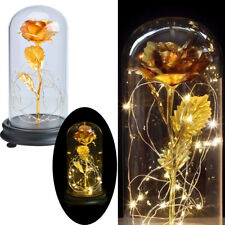 Beauty And The Beast 24k Gold Plated Forever Rose Dip Led Light Glass Love Gift