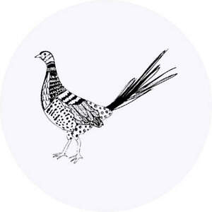 'Patterned Pheasant' Stickers (SK010957)