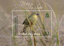 Tristan da Cunha 2014 Finches 1v MS MNH