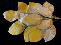 "Hair Z38 Vintage Millinery Flower 3 1//2/"" Brown Green Velvet Leaf Lot 6p Hat"