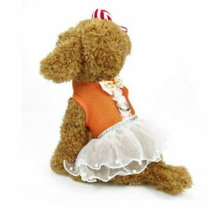 Pet Clothes Small Dog Cat Summer Cute Tutu Skirt Puppy Harness Bowknot Dress #W