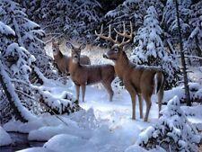 Winter Deers Animals Paint By Numbers Kit Deer Painting Canvas Paint Art Kits