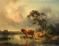 Stunning ART Oil painting two cows cattles in sunset landscape by river canvas