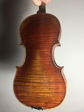 Beautiful 4/4 Violin without Label, Needs Setup, Luthier Special, One Piece Back