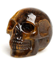 2'' Natural Tiger Eye Crystal Skull Specimen Hand Carved Quartz Healing Reiki