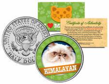 Gato de Himalaya