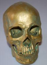 1:1 Lifesize Resin Human Head Skull Anatomical Skeleton Model Antique Bronze