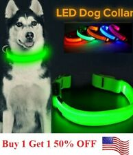 Safety Led Dog Pet Light Up Collar Night Glow Adjustable Bright 5 Color Leash Xs