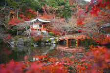 STUNNING JAPANESE GARDEN LANDSCAPE CANVAS #300 QUALITY CANVAS WALL ART PICTURE