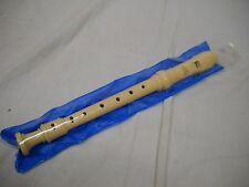 Recorder sleeve / case unbranded, blue