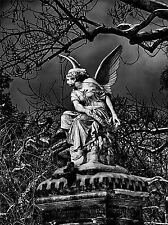 PHOTO STATUE SCULPTURE ANGEL WINGS CREEPY BLACK WHITE ART PRINT POSTER MP4001A