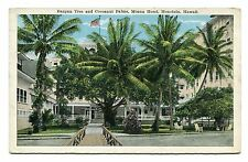 Pre 1930 Unused White Boarder Post Card Banyan Tree Coconut Honolulu Hawaii