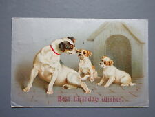R&L Postcard: 1907 Dog & Puppies with Kennel, Birthday, Popular Sr