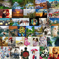 Digital Painting By Numbers Kit DIY Wonderland Canvas Oil Art Picture Craft Home