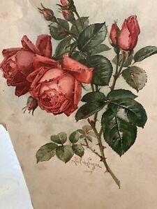 ANTIQUE VICTORIAN SIGNED PAUL DeLONGPRE ROSES ORIG PRINT CORSET Shop Detroit A.I