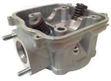 Genuine Quadzilla DINLI 801 270 Cylinder Head Assembly with Valves