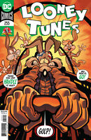 Looney Tunes #255 Cover (2020 Dc Comics) First Print