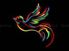 BIRD ARCOBALENO COLORATO illustrazione FOTO art print poster foto bmp1436a