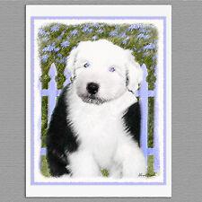 6 Old English Sheepdog Blank Art Note Greeting Cards