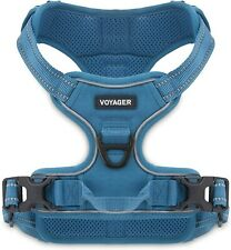 New listing Voyager Dog Harness By Best Pet Supplies - Turquoise